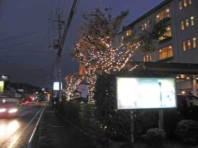 2008-11-28-004.jpg