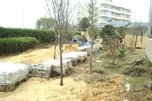 garden1_jpg_300px.jpg