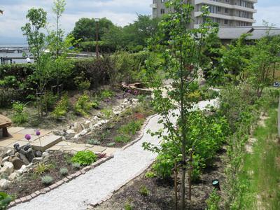 6月の庭園
